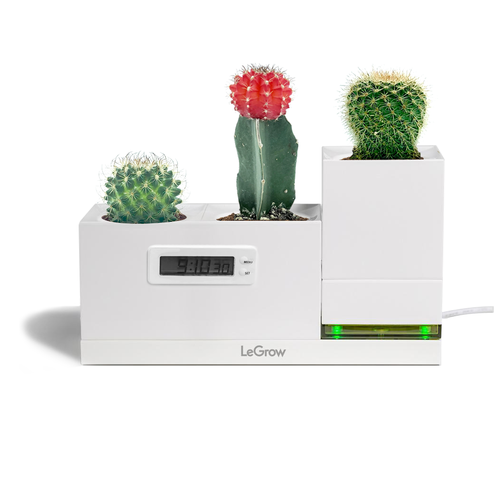 LeGrow Power Pot and LeGrow Clock with Cactus