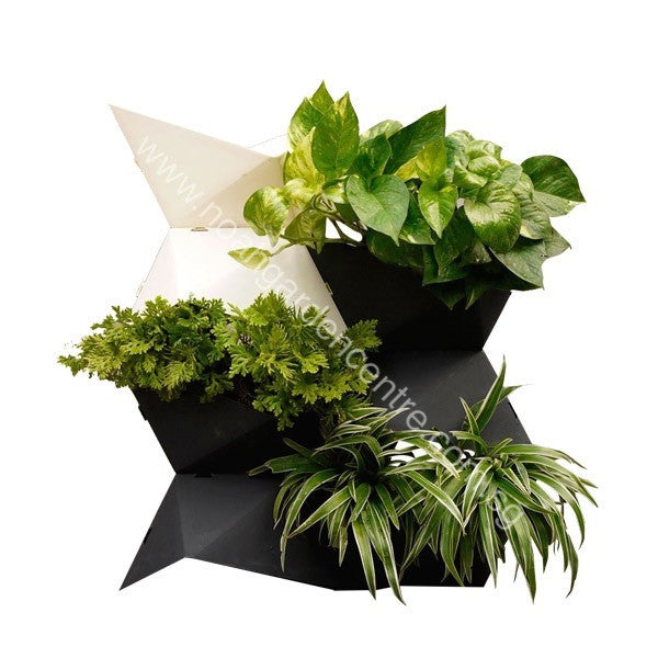 Prai Origami Vase with Plants (B)