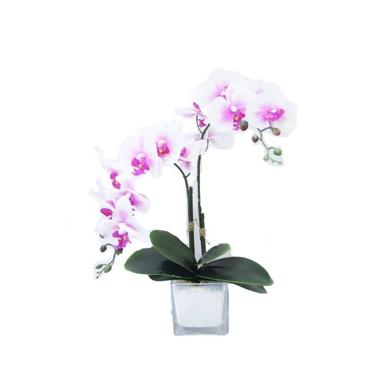 Artificial Pink White Phalaenopsis Orchid Arrangement (0.55m)