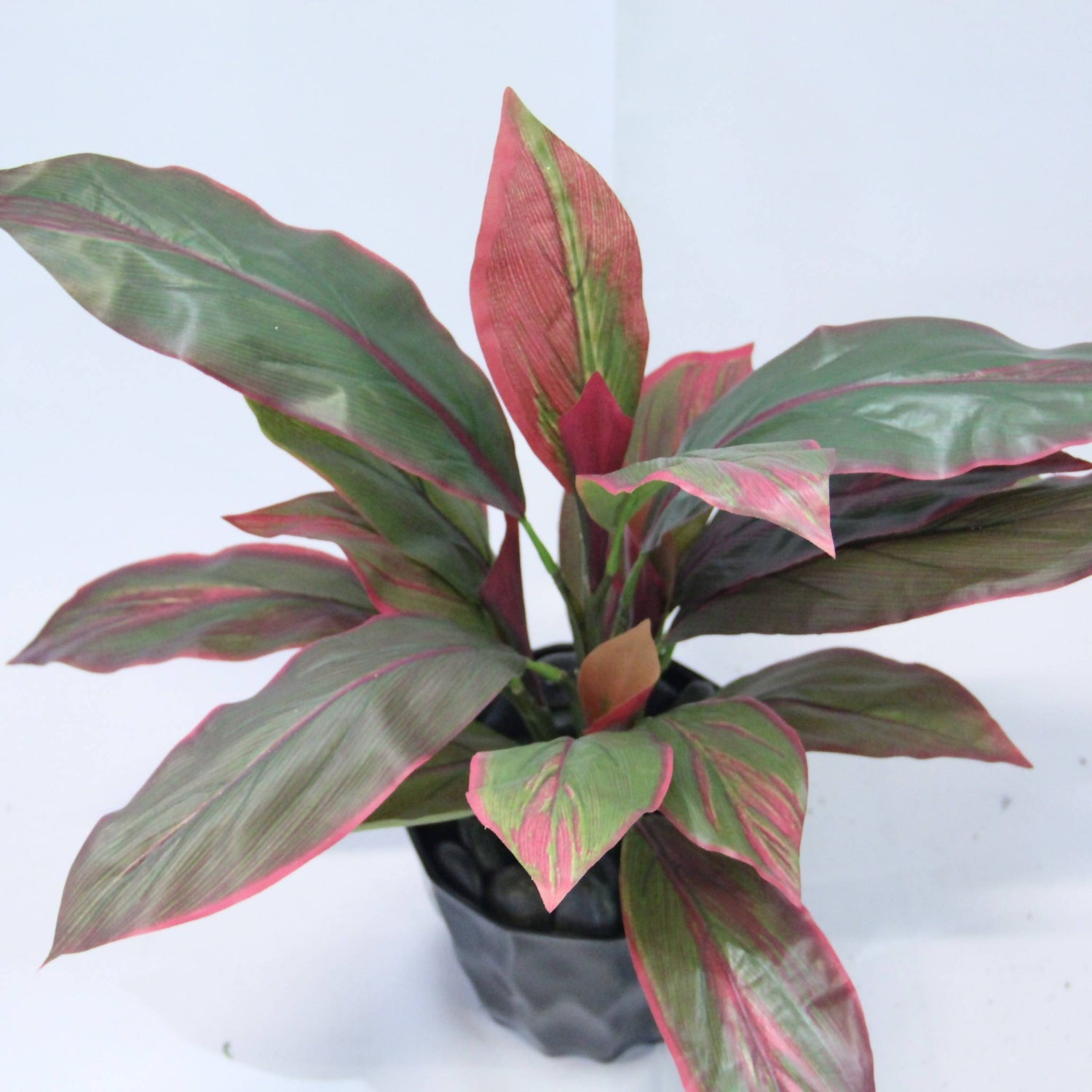 Artificial Cordyline Leaf with Black Pot (Real Touch) (0.5m)