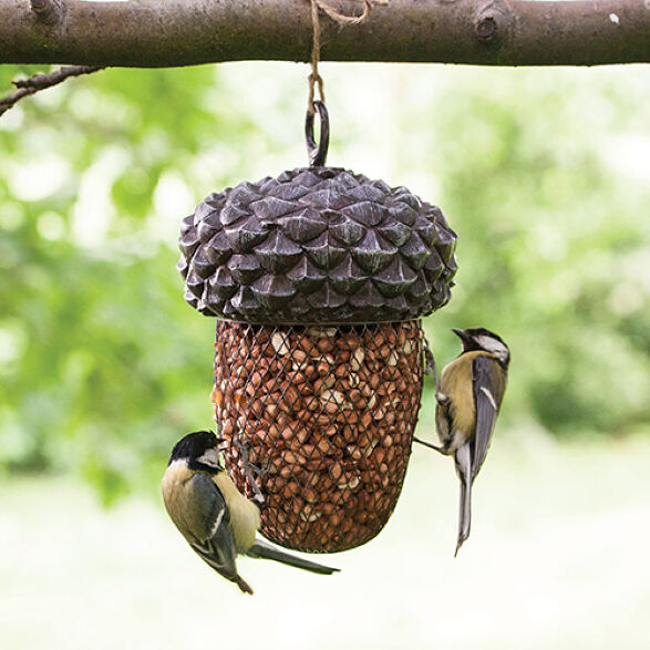 Bird Feeders & Houses