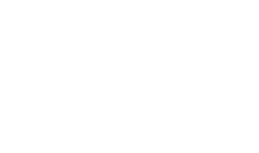 Beauty Incubator Group