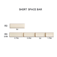 Load image into Gallery viewer, Enjoypbt ABS key cap dolch two color key cap mechanical key cap 153 key cherry height