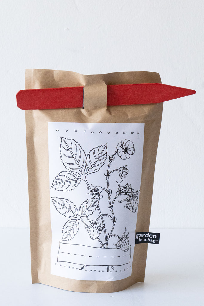 Strawberry Garden Bag