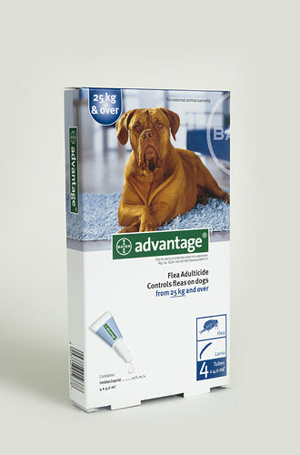 Advantage Extra Large Dogs 25kg+