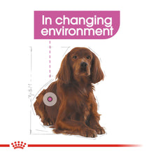 Load image into Gallery viewer, ROYAL CANIN® Medium Relax Care