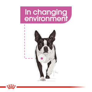 ROYAL CANIN® Mini Relax Care