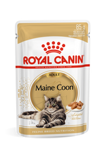 Load image into Gallery viewer, ROYAL CANIN® Maine Coon in Gravy