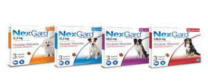 Nexgard Spectra Dog Tick & Flea Treatment