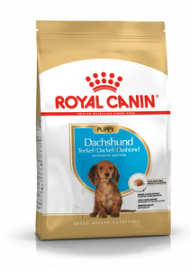 ROYAL CANIN® Dachshund Puppy