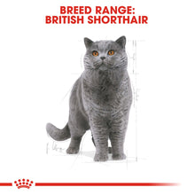 Load image into Gallery viewer, ROYAL CANIN® British Shorthair Adult