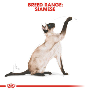 ROYAL CANIN® Siamese Adult