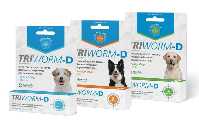 Triworm-D Dogs Single Pack Small - Large