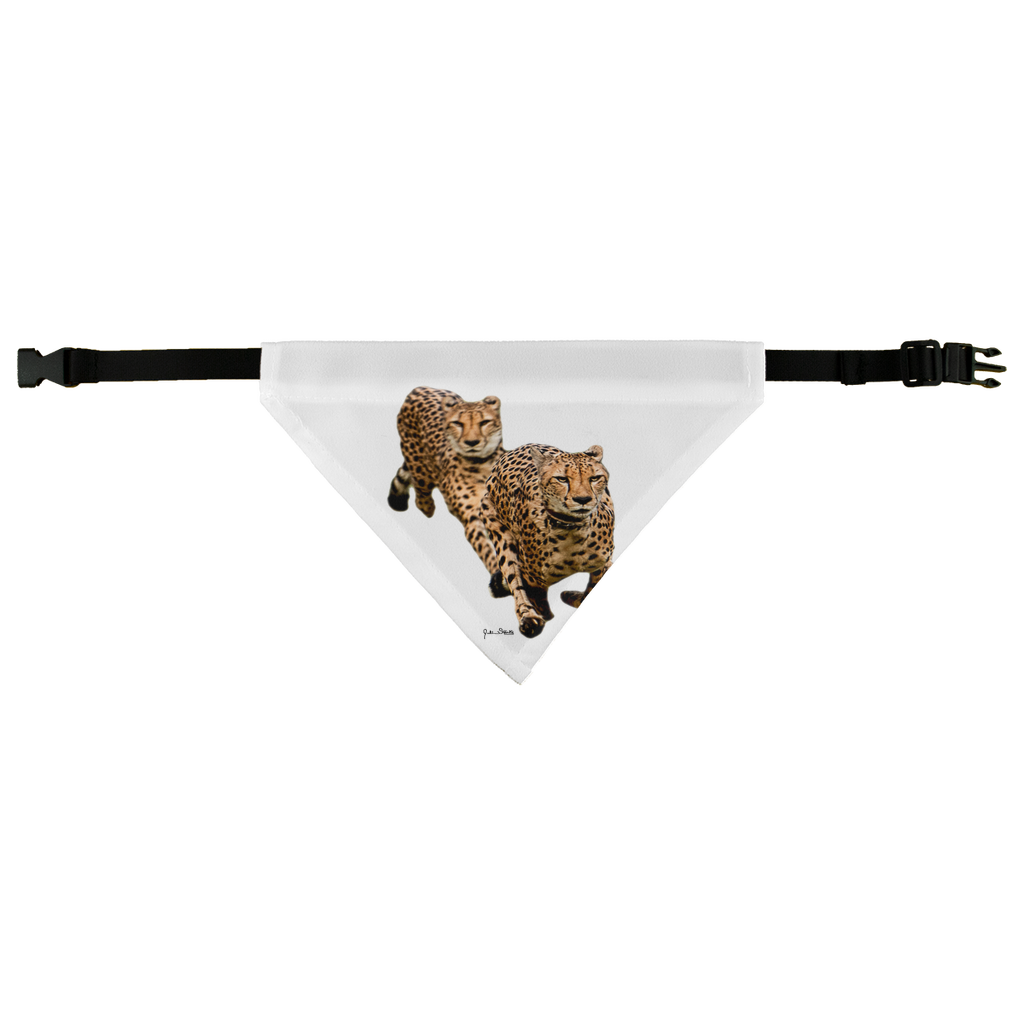 The Cheetah Brothers Pet Bandana