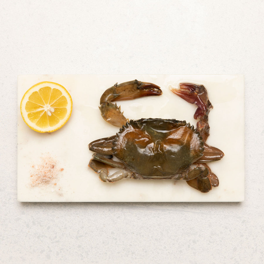 Frozen Soft Shell Crab Whole (Raw)