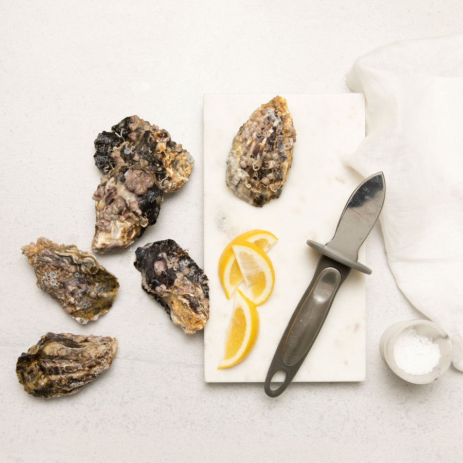 Live Pacific Oysters