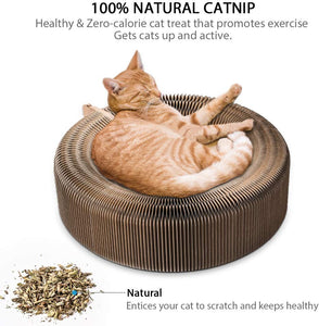 Pet Scratcher & Lounge