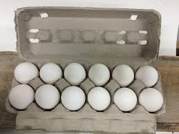 Large White Eggs, (12 eggs)