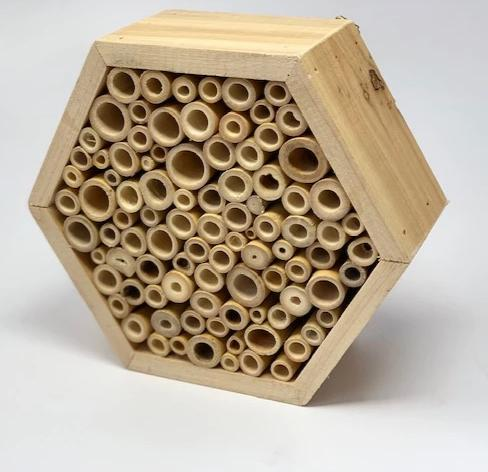 Bees need our help! Introducing the Bee Hotel