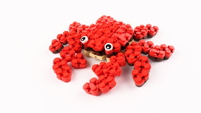 FLEXO Ocean Life Crab - STEAM Kids