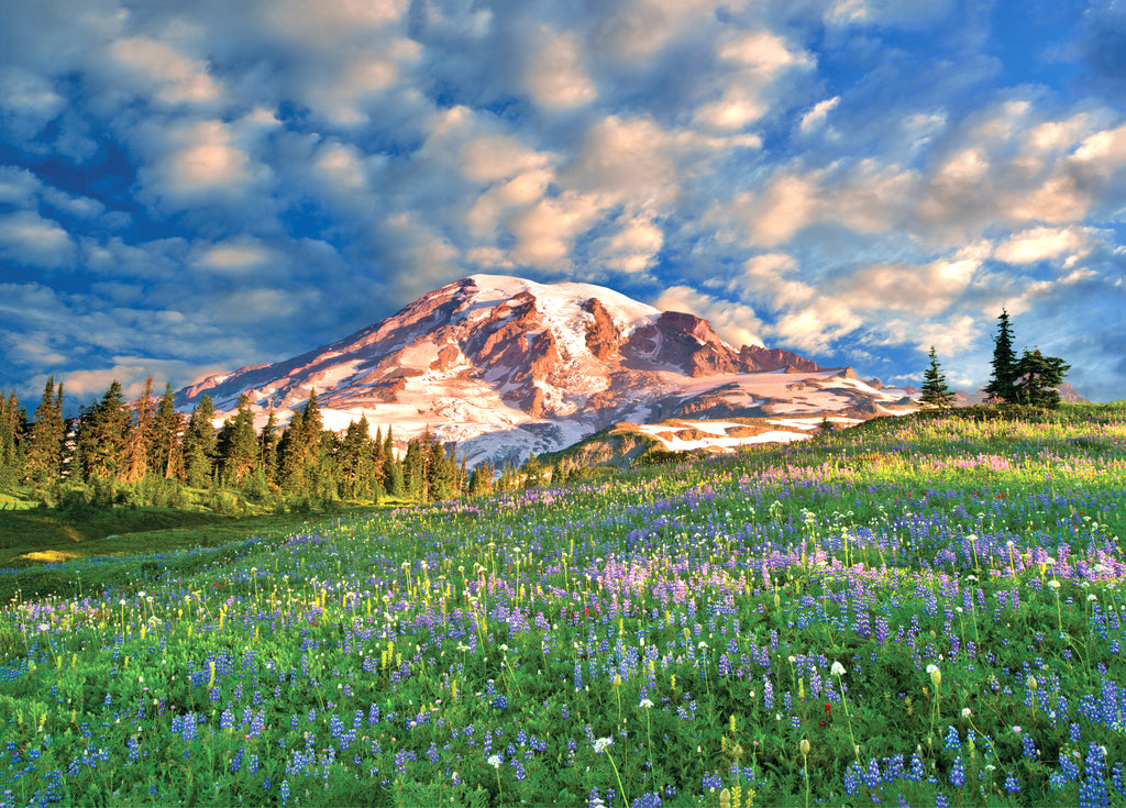 Wildflowers at Mount Rainier 1000 Piece Puzzle by Peter Pauper Press - STEAM Kids Brisbane