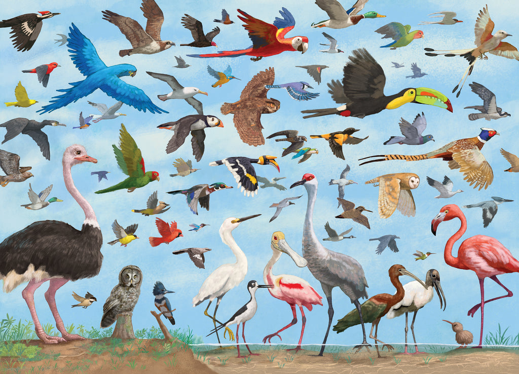 All the Birds 1000 Piece Puzzle |Peter Pauper Press| - STEAM Kids Brisbane