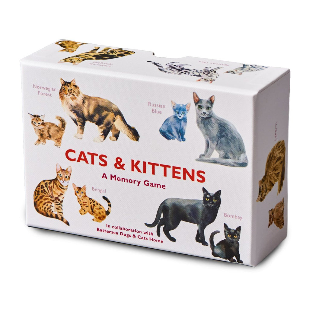 Cats & Kittens Memory Game - STEAM Kids Brisbane
