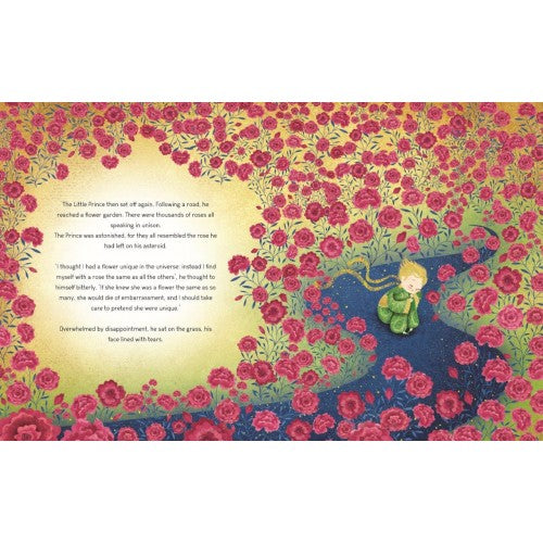 Sassi Story Book - The Little Prince - STEAM Kids Brisbane