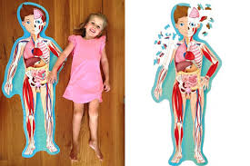 Sassi Travel Learn and Explore the Human Body Book and Puzzle - STEAM Kids