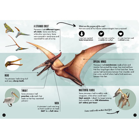 Sassi The Age of Dinosaurs Book and Pteranodon 3D Model - STEAM Kids Brisbane