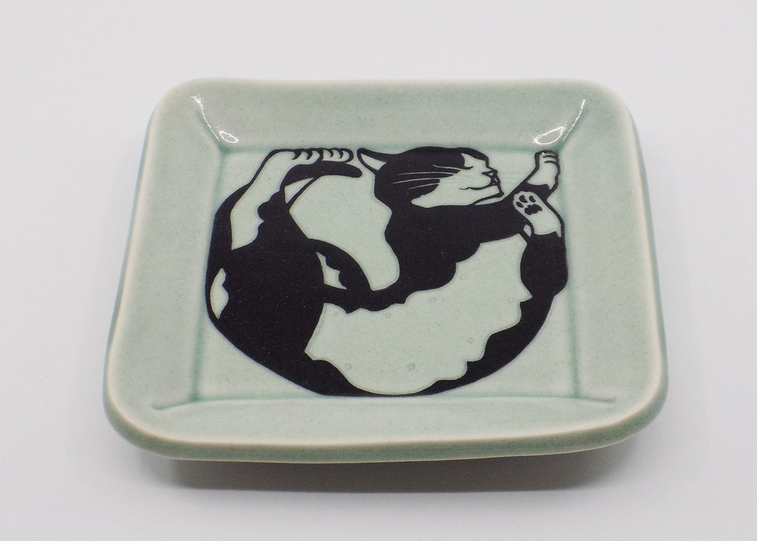 Square Cat Plate