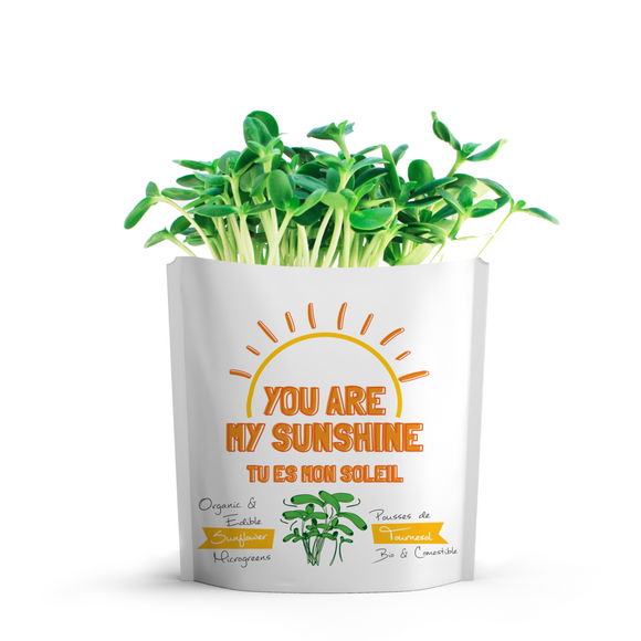 You Are My Sunshine Greeting Card Microgreens Pouch