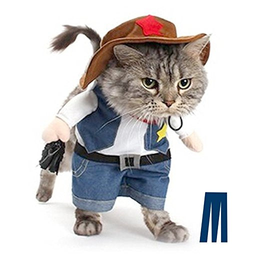 Dog or Cat Cowboy Costume
