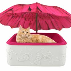 cat umbrella pet bed