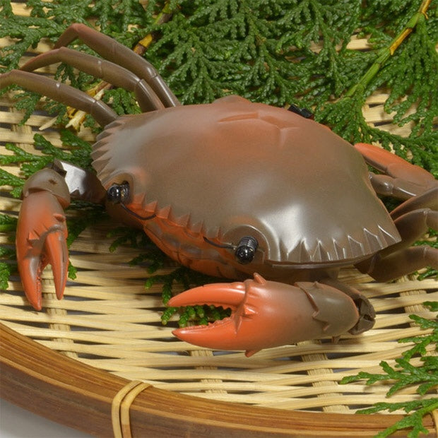 Remote control kan crab on plate.
