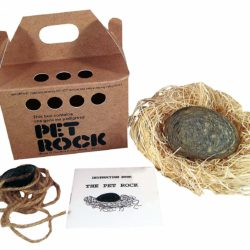 pet rock with walk leash to take for a walk funny gag gift.