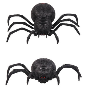 wolf spider rc toy top and front view white background.