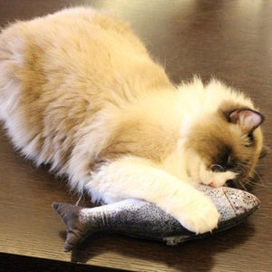 Vibrating Fish Cat Toy