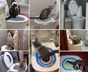 Cat Toilet Trainer System
