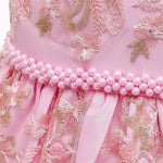 Load image into Gallery viewer, Girls Pink Lace Princess Dress