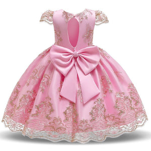 Girls Pink Lace Princess Dress