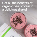 Plant Based - Organic Pea Protein Shake - French Vanilla