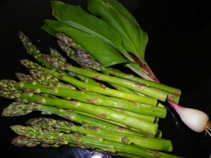 Heirloom 3 Year Asparagus Roots and Wild Ramps Buy Best *