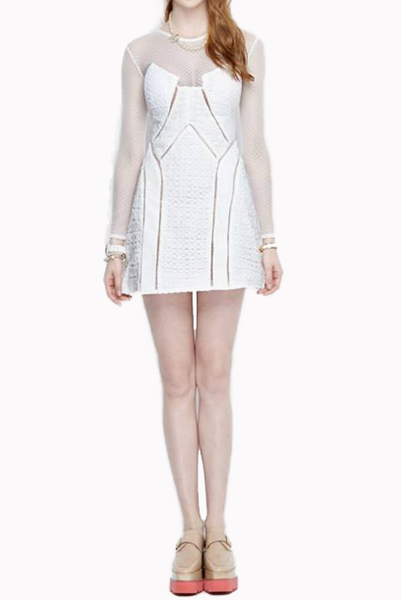 Panelled Dress With Mesh Bodice & Sleeves