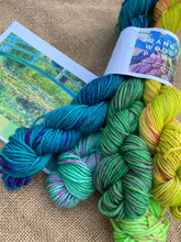 Load image into Gallery viewer, Monet's Water Lilies and Japanese Bridge - Mini Skein Set 100g