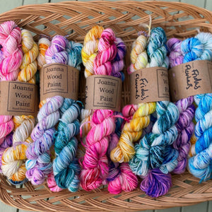 Frida's Flowers - Mini Skein Set 100g