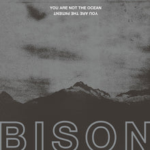 Load image into Gallery viewer, BISON - You Are Not The Ocean, You Are The Patient