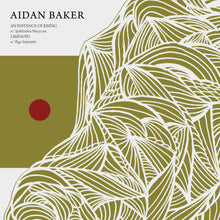 Load image into Gallery viewer, Aidan Baker - An Instance of Rising / Liminoid