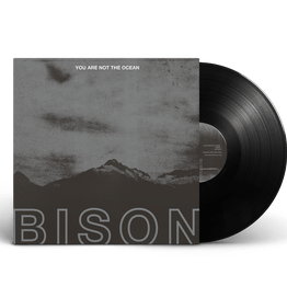BISON - You Are Not The Ocean, You Are The Patient