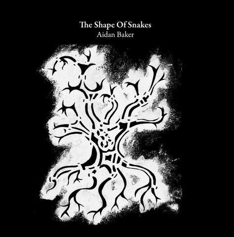 AIDAN BAKER - The Shape of Snakes